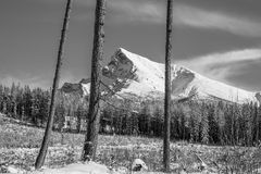 Monochrome landscape view of Mt Krivan in High Tatras, Slovakia Royalty Free Stock Photography