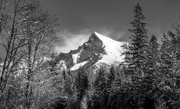Monochrome landscape view of Mt Krivan in High Tatras, Slovakia stock image