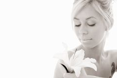 Monochrome lily blond Stock Photos