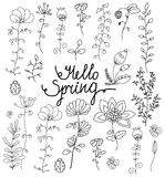 Monochrome line drawing of flowers set. With butterfly with the words Hello spring on white background Stock Photos