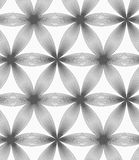 Monochrome linear striped six pedal flowers Stock Images