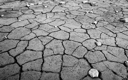 Monochrome mud texture of drying prism desiccation cracks in soil. Monochrome clay texture of drying prism desiccation cracks in ground. Cracked and dried mud stock images
