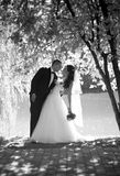 Monochrome photo of beautiful bride and groom kissing under big Royalty Free Stock Images