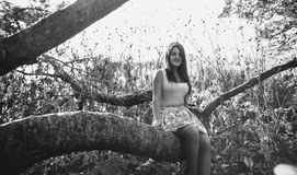 Monochrome  photo of cute woman sitting on big branch at meadow Royalty Free Stock Images
