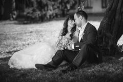 Monochrome photo of newly married couple sitting under tree at p Royalty Free Stock Photos