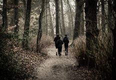 Monochrome Photography of People Jogging Through The Woods Royalty Free Stock Photos