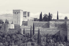 Monochrome picture of alhambra palace spain Royalty Free Stock Photos