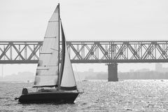 Monochrome picture of sailing yacht catching the wind against tr Stock Photography