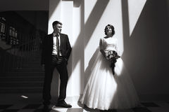 Monochrome portrait of bride and groom Royalty Free Stock Photo