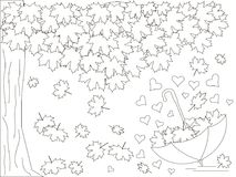 Monochrome romantic background with maple tree, inverted umbrella, hearts, falling maple leaves coloring book Stock Photos