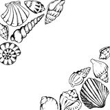 Monochrome sea shells line art hand drawn frame vector isolated Stock Photos