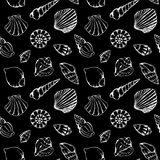 Monochrome sea shells vector seamless pattern texture background Stock Photos
