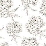 Monochrome Seamless Background with Hydrangea Royalty Free Stock Photography
