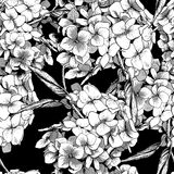 Monochrome Seamless Background with Hydrangea Stock Photography