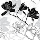 Monochrome  seamless  background with magnolia. Stock Photo