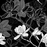 Monochrome  seamless  background with magnolia. Royalty Free Stock Image