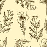 Monochrome Seamless floral pattern Royalty Free Stock Photos