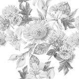 Monochrome seamless pattern with beautiful flowers. Lilia. Calla. Hydrangea. Stock Image