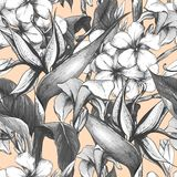 Monochrome seamless pattern with exotic flowers Stock Photos