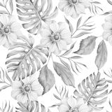 Monochrome seamless pattern with flowers. Monstera. Anemone. Watercolor illustration. Royalty Free Stock Image