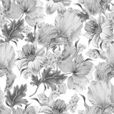 Monochrome seamless pattern with flowers. Narcissus. Iris. Lily. Watercolor illustration. Stock Image