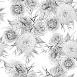 Monochrome seamless pattern with flowers. Rose. Chrysanthemum. Peony. Watercolor illustration. royalty free stock photography