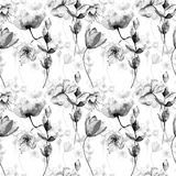Monochrome seamless pattern with garden flowers.  watercolour illustration Stock Image