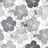 Monochrome  seamless pattern with hibiscus flowers. Monochrome seamless floral pattern with hibiscus flowers Royalty Free Stock Photos