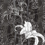 Monochrome seamless pattern with lilies. Hand-drawn floral backg Royalty Free Stock Photos