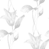 Monochrome seamless pattern with Lily flowers Royalty Free Stock Photos