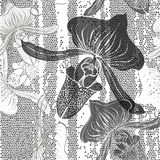 Monochrome seamless pattern with orchids. Hand-drawn floral back Stock Photography