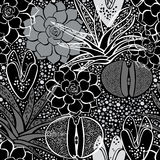 Monochrome seamless pattern with succulents. Stock Photo