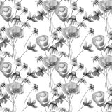 Monochrome seamless pattern with Summer flowers. Watercolor illustration Stock Photos