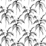 Monochrome seamless wallpaper with Summer flowers Stock Image