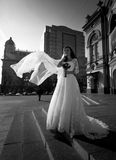 Monochrome shot of bride with long veil posing on street at wind Royalty Free Stock Photography