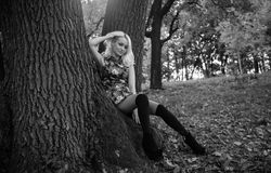 Monochrome shot of sexy woman sitting under big tree at forest Stock Images
