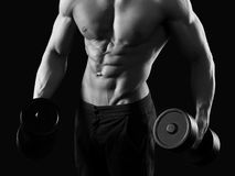 Monochrome shots of a male bodybuilder Royalty Free Stock Image