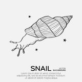 Monochrome silhouette of snail drawing outline. Royalty Free Stock Photo