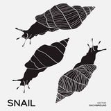 Monochrome silhouette of snail drawing outline. Stock Image