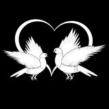 A monochrome sketch of two flying doves Stock Image