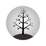 Monochrome sphere with christmas tree with garlands Stock Photos