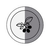 monochrome sticker contour in circular dot line with coffee tree branch Royalty Free Stock Photo