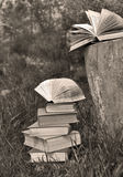Monochrome still life with pile of books Royalty Free Stock Images