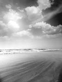 Monochrome summer beach Royalty Free Stock Images
