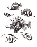 Monochrome Tropical Fishes. 6 Different Monochrome Tropical Fishes with heart shaped Bubbles Stock Photo