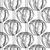 Monochrome tulip seamless pattern. Vector flower background Royalty Free Stock Photography