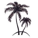 Monochrome two tropical palm tree sea ocean beach hand drawn sketch vector.  Stock Photos