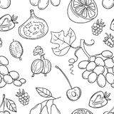Monochrome vector seamless pattern with fruits. Abstract healthy food background with fruits for wallpaper, web page background, wrapping, textile and Royalty Free Stock Images