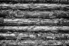 Monochrome Wall of Wood Logs Stock Photography