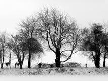 Rural snow scene Royalty Free Stock Image